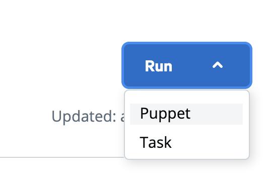 PE puppet run