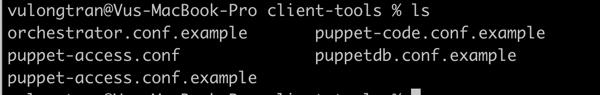 Copy puppet access details