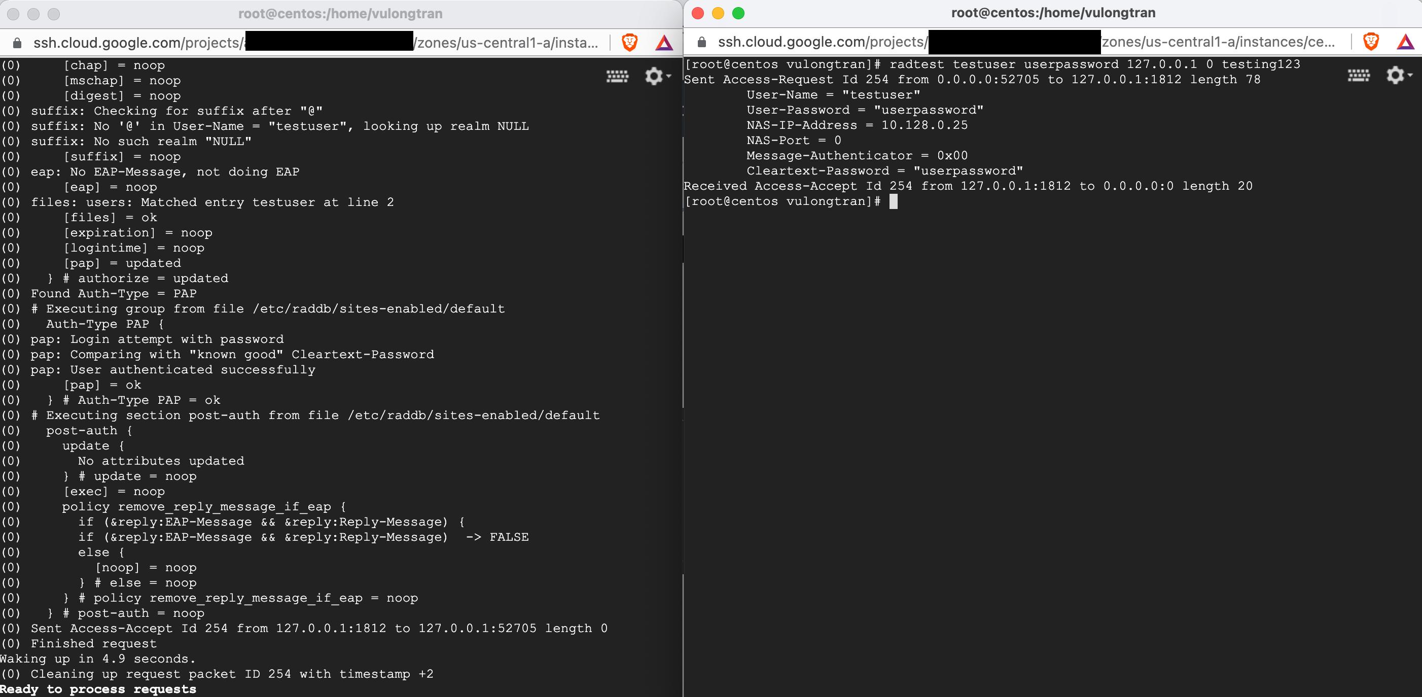 freeradius-user-file-testuser-output2
