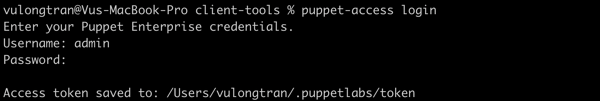 Puppet access logged in success